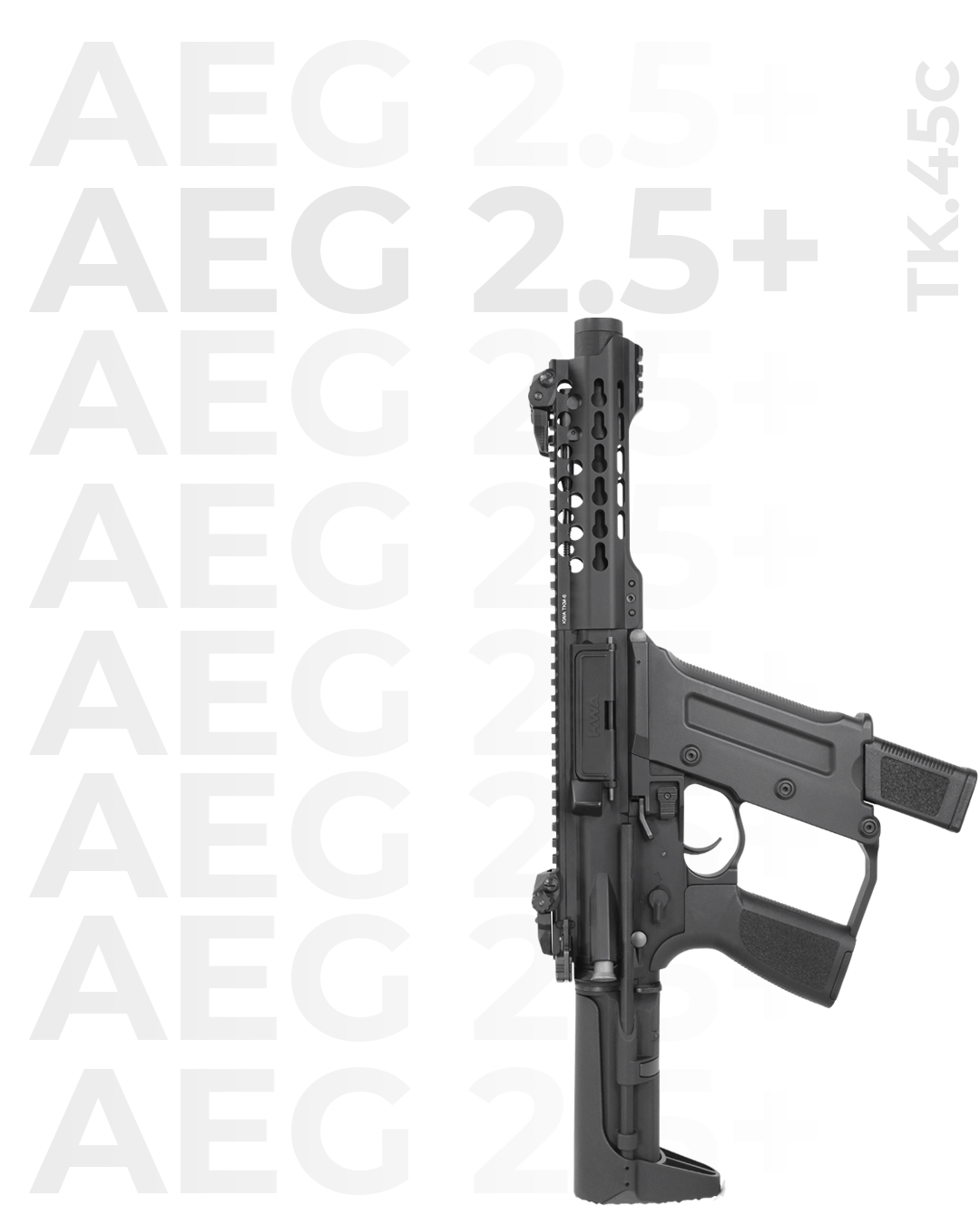 AEG2-5-SM-Gun2